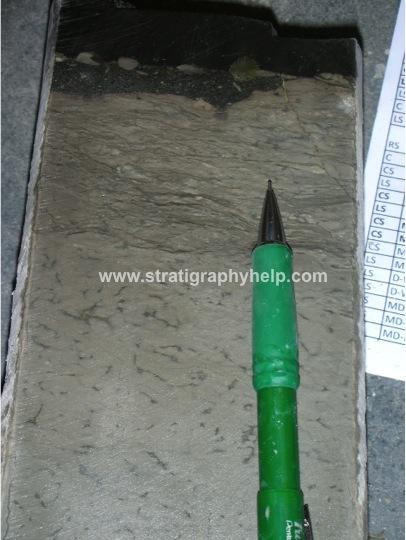 pen stratigraphy